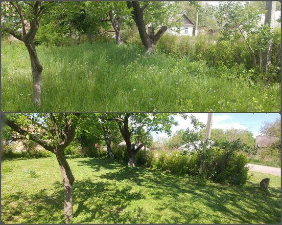 Покос трави, зачистка території (ціни в описі)