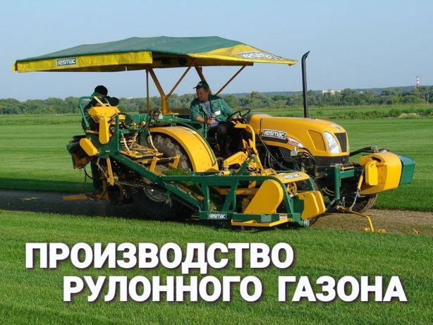 Трава рулонная – газон выносливый с гарантией + Автополив газона
