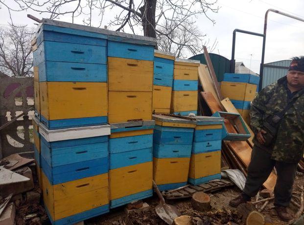 Улики для пчел, почти за даром. 10 рамок.