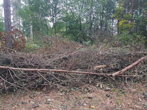 Drewno-gałęzie-zrębki