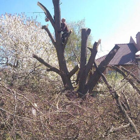 СПИЛ деревьев, валка, ДРОБЛЕНИЕ, расчистка территории, Аварийных.