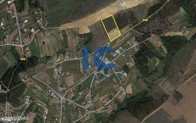 Terreno rústico para construção em Brunhido