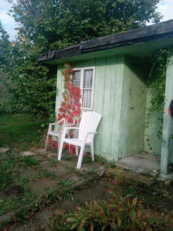 Ogród ROD Bielany  Elbląg