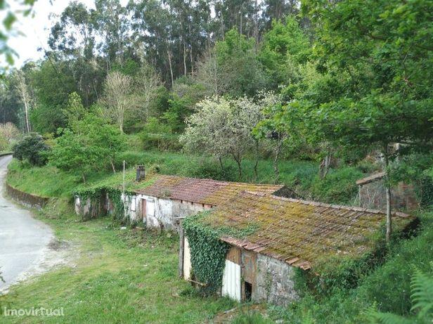 Moradia para Restauro com aprox. 2.600 m2 de Terreno - V. N. Cerveira