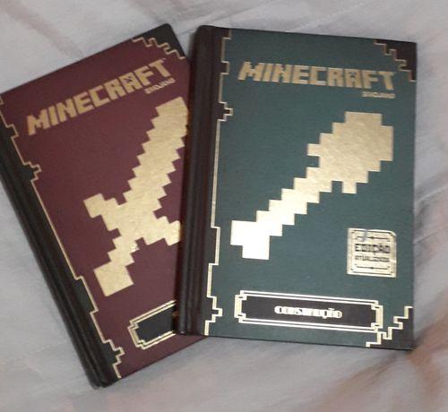 Livros sobre Minecraft