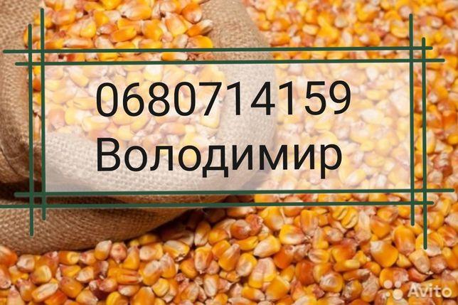 Відход кукурудзи вся Україна