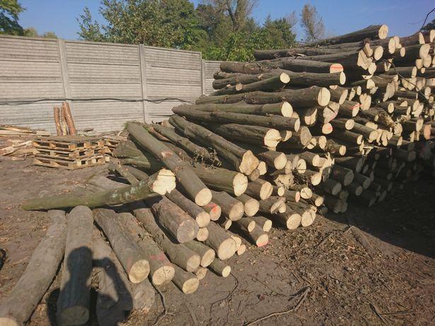 Drewno kominkowe Grab