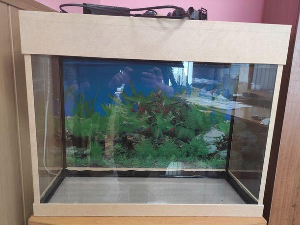 Продам аквариум 100 л с полным комплектом