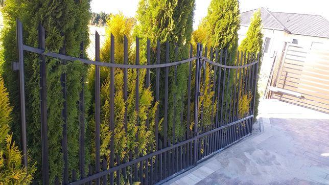 Brama ogrodzeniowa metalowa.