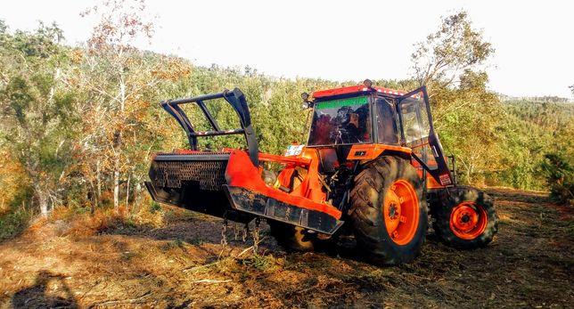 Limpeza terrenos,floresta, lotes, quintas bouças loteamentos zona nort