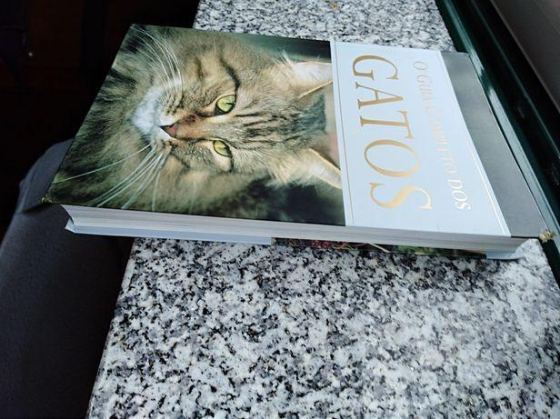 Livro sobre gatos