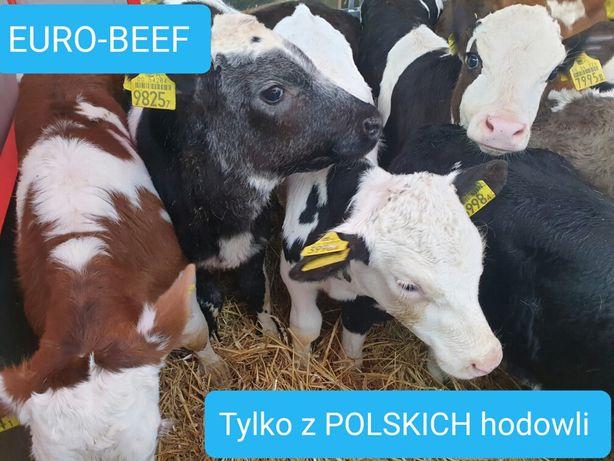 Polskie bydło