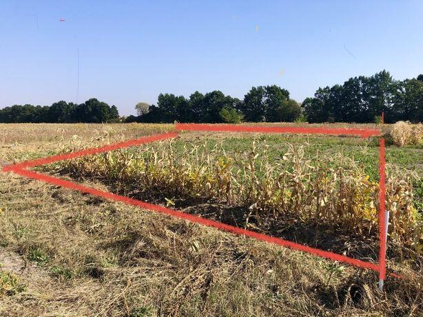 Земельный участок в Процеве, 12 соток под индивидуальное строительство