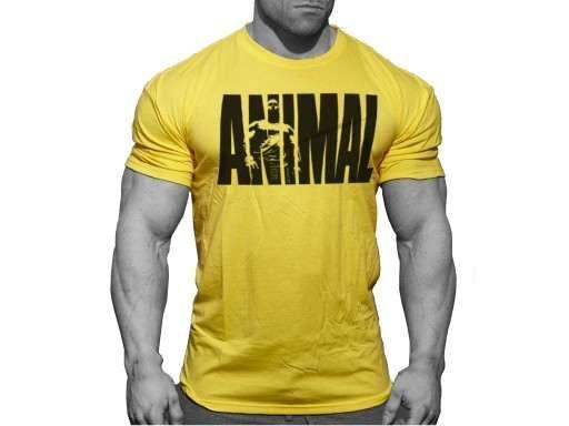 Super Koszulka ANIMAL Żółty Ostatnie SZTUKI!!!
