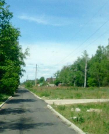 Продам 50сот с лесом и выходом на Обводной канал.