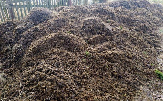 Ekologiczny obornik koński w dużych ilościach