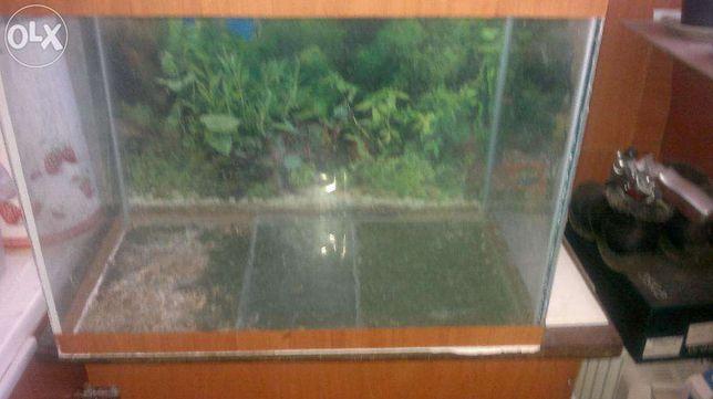 Продам стеклянный аквариум на 60 литров в хорошем состоянии
