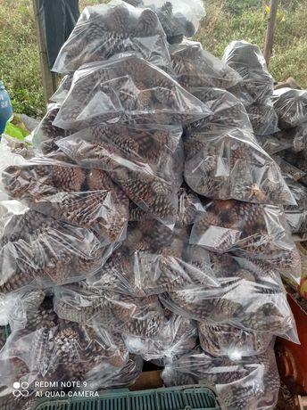 Vendo lenha de mistura bem seca