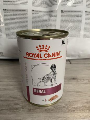 Royal Canin Renal 6x410g puszka DIETA WETERYNARYJNA nerki