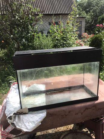 Меняю аквариум на 750 гр