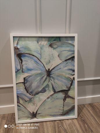 Obraz motyle miętowy drewniana rama 73x53x4 cm