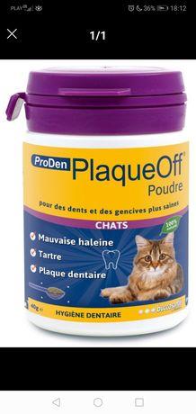 Dentystyczny środek dla kota