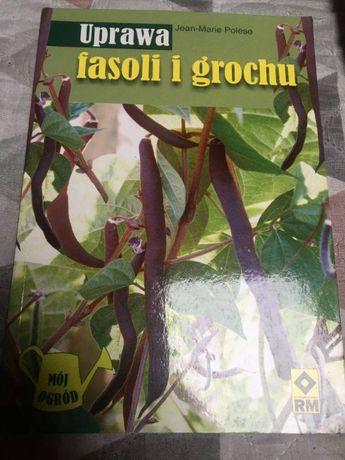 Uprawa fasoli i grochu - Mój ogród, Jean-Marie Polese