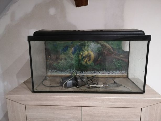 Akwarium 110l filtr grzałka
