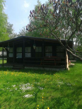 Do wynajęcia domek letniskowy nad zalewem Sulejowskim w miejscowości T