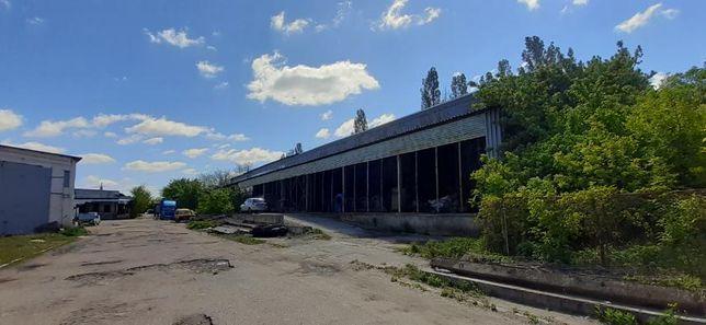 25912 N3 Продам производственно-складское помещение