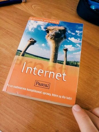 Książka stary przewodnik po internecie