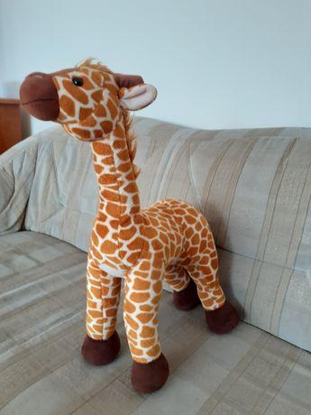 Pluszak żyrafa