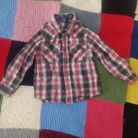 Лот  набор рубашка длинный рукав короткий рукав + подарок шорты Lupilu
