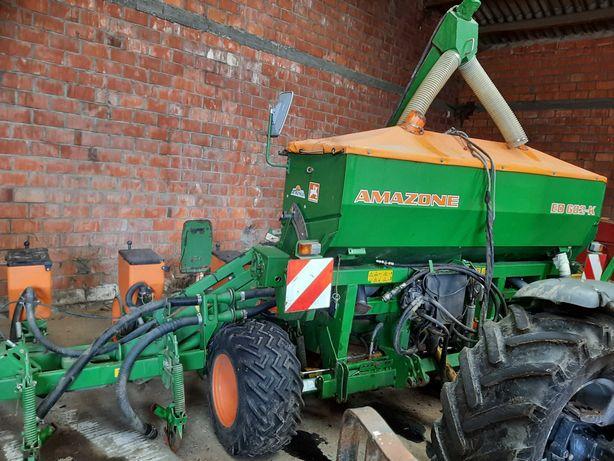 Siewnik do kukurydzy Amazonen 8 rzędów