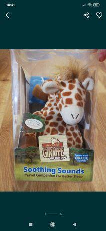 Claud b śpiąca żyrafa w podróży z pozytywką