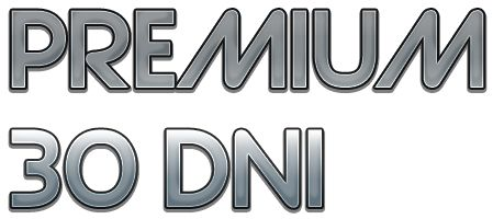 Konto NETFLIX PREMIUM 30dni/60dni