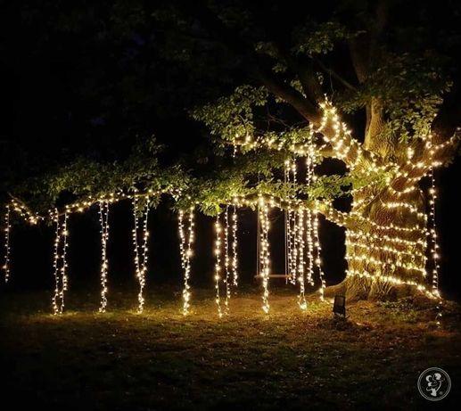 Girlandy Żarówkowe | Lampki Fairy Lights - Wynajem | Montaż | Stelaż