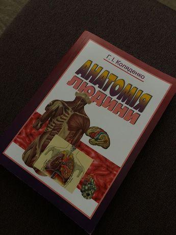 Книга , Анатомія