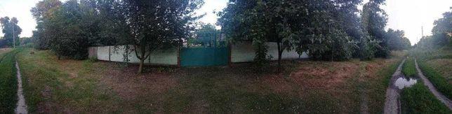 Продам дом с участком, с пристройками в селе Чернеччина