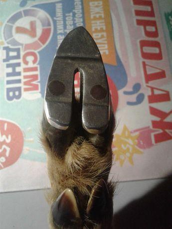 Сувенир козья ножка