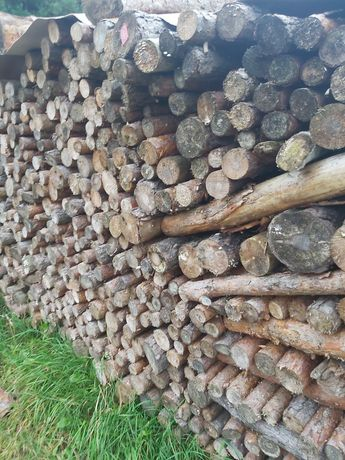 Drewno opalowe sosna