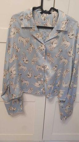 Koszula mopsy psy ZARA