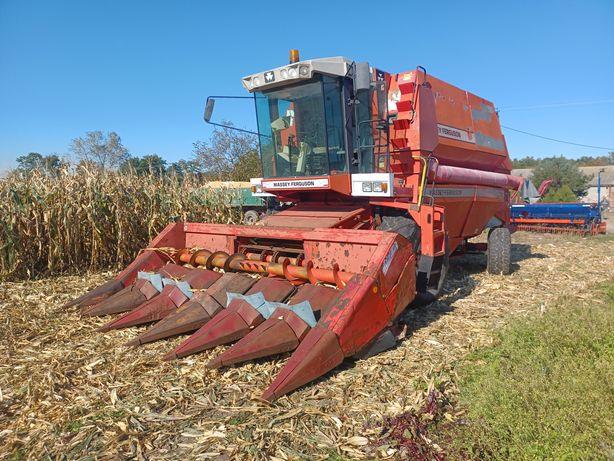 Kombajn zbożowy Massey Ferguson 38 heder 6m przystawka do kukurydzy