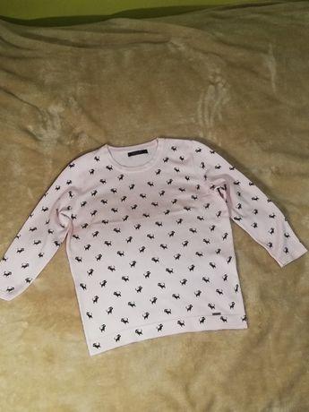 Mohito bluzka/sweterek dopasowany pudrowy róż w urocze pieski rozm. 38