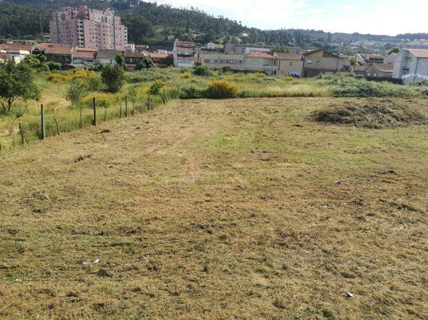 Limpeza terrenos / Áreas verdes zona Norte
