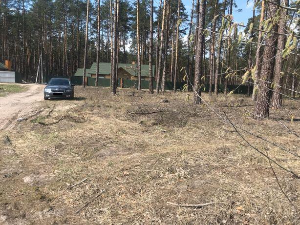 Участок земли Вышгородский район, Пирново 10 соток