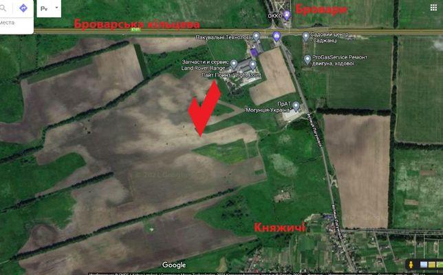Продам ділянку 29 соток землі (участок) Броварська ОТГ