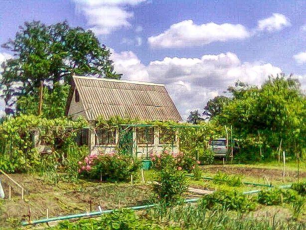 Продается дачный участок с домом на Забаркино