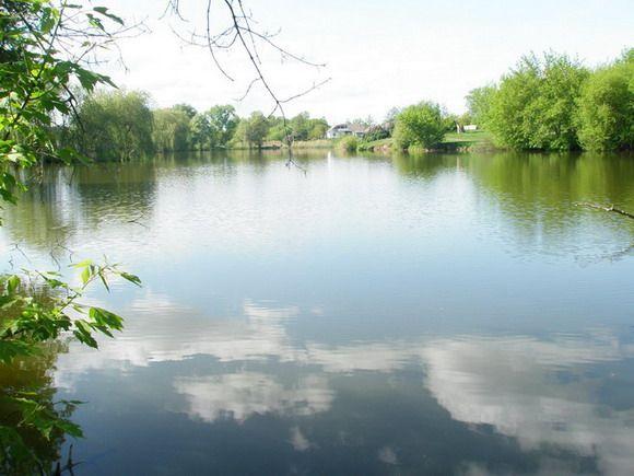Продажа участка от 0.15Га с.Гусачевка,Безрадичи, застройка, лес ,озеро