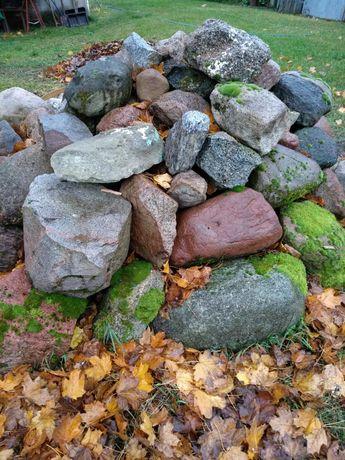 Kamienie polne oddam  za darmo